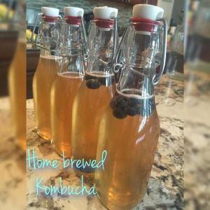 Fruit infused kombucha